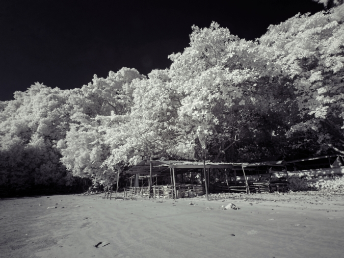 Black sky, white foilage, a infrared photo of Pasir Panjang beach. Caputured with Tiffen 87 filter.