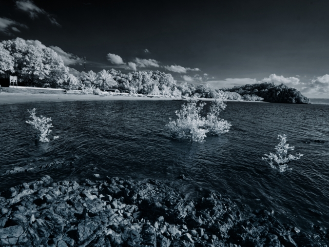 A infrared view of the Pasir Panjang beach. Captured with Tiffen #87 opaque 760nm infrared filter mounted.